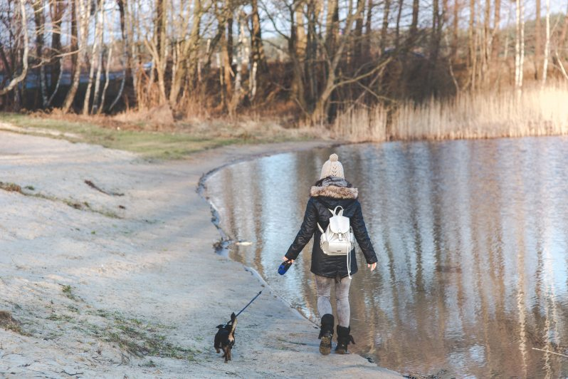 Girl and dog go for a walk by a pond