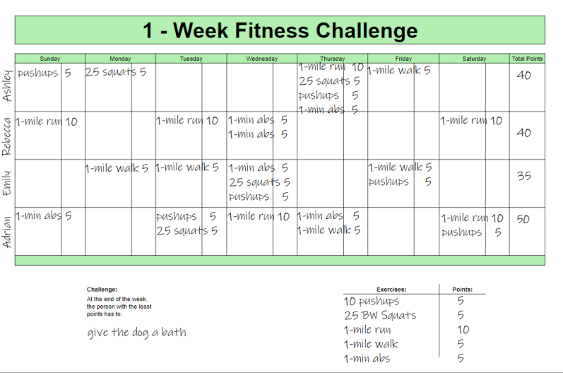 fitness chart with fields completed