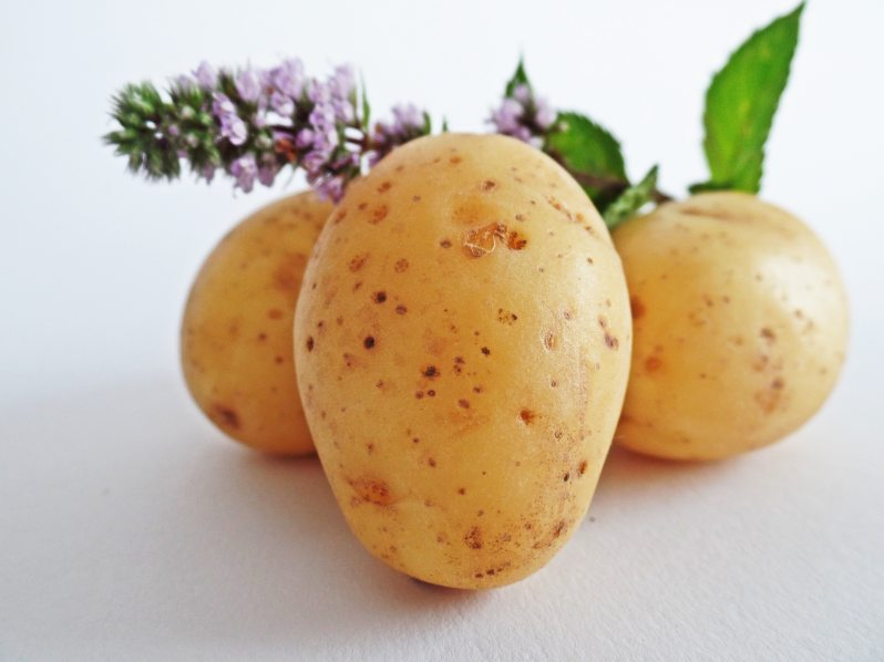three potatoes with blossom